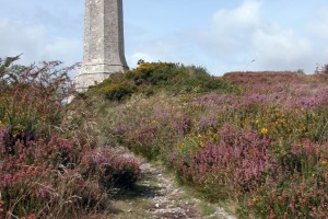 Hardy Monument
